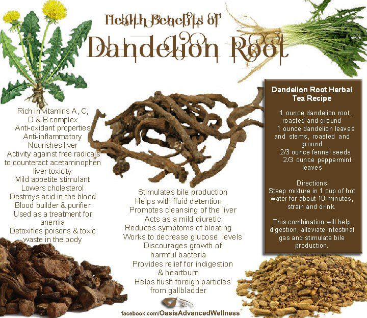 Roots Of Nature Remedies