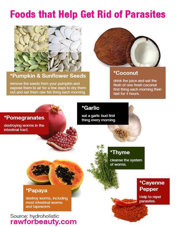 Anti-parasitic Foods