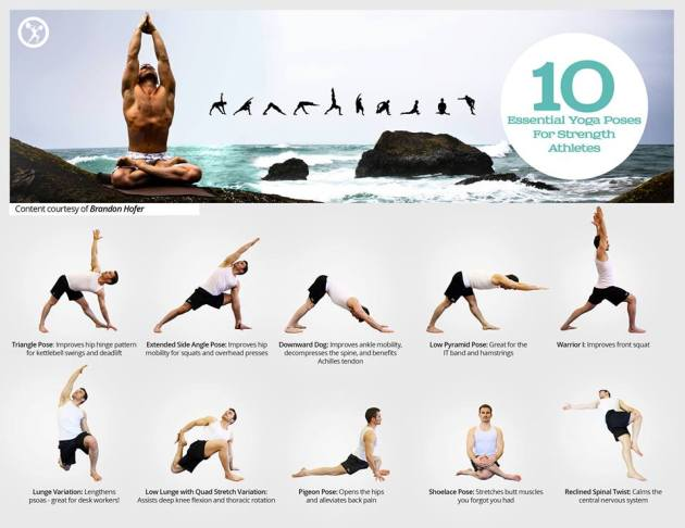 10 essential Yoga exercises to strengthen your body